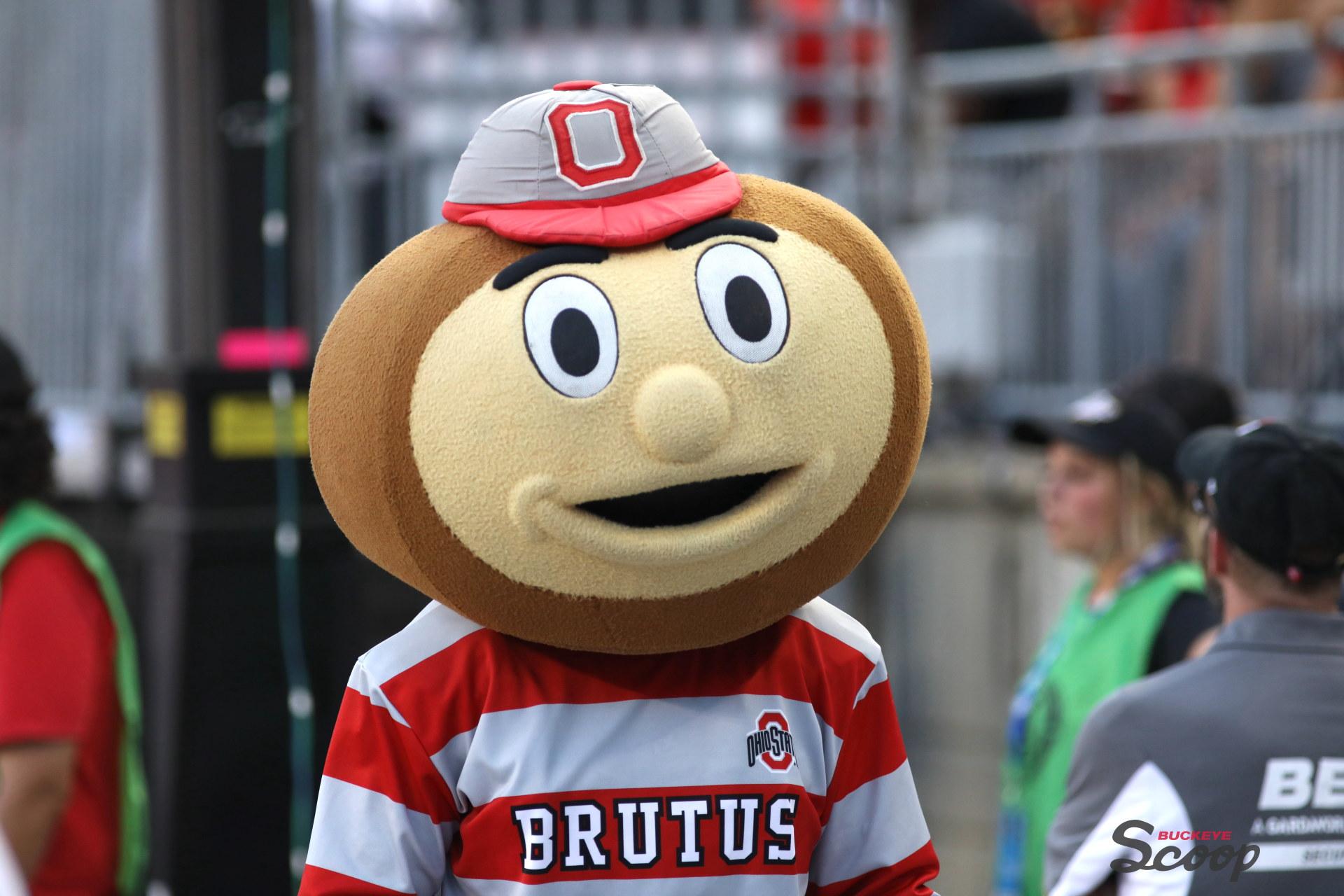 Ohio State football Brutus Buckeye